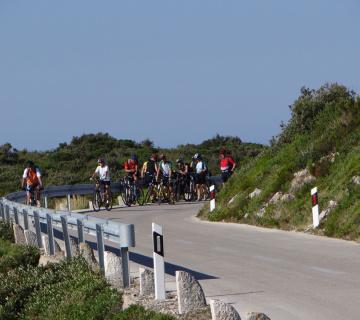 Biking Vis 360x320 5316d10b2cf2ab479433713a6d4c1cc3